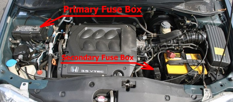 The location of the fuses in the engine compartment: Honda Odyssey (RL1; 2000-2004)