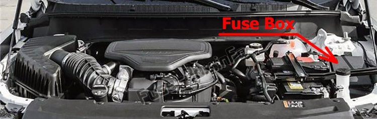 The location of the fuses in the engine compartment: Cadillac XT6 (2020-...)