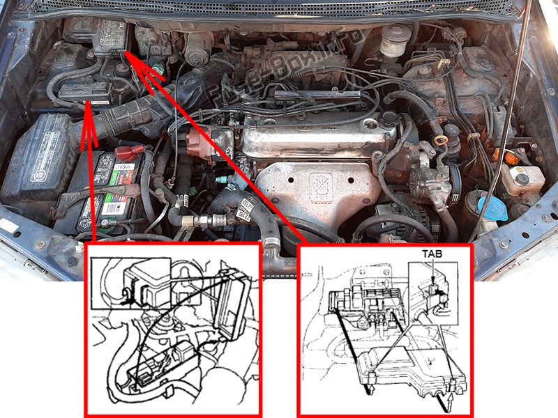The location of the fuses in the engine compartment: Honda Odyssey (1994-1998)